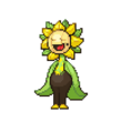 Mega Sunflora (Female)
